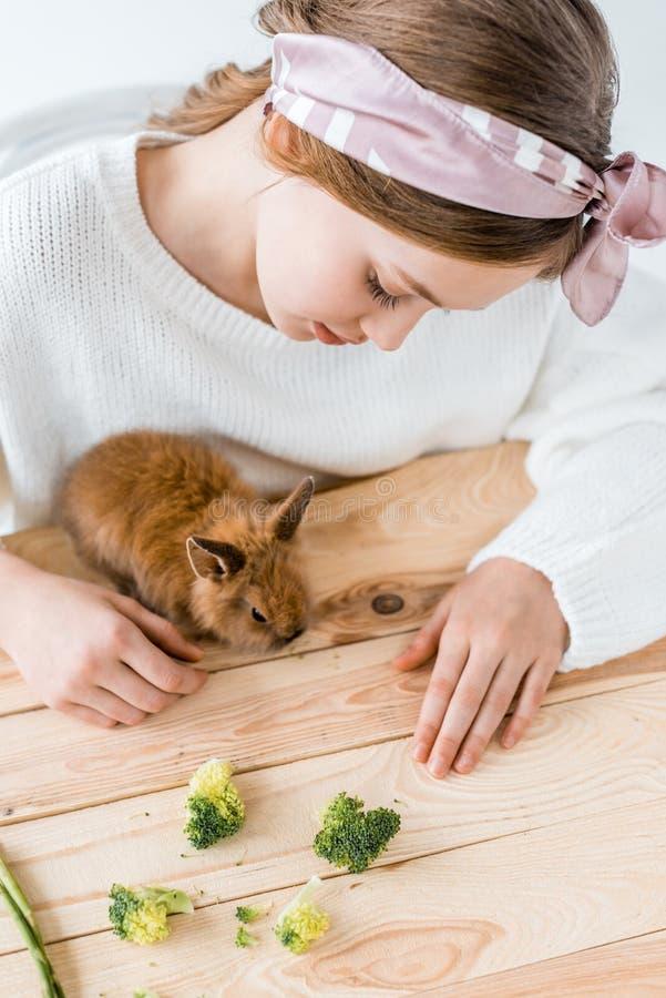Menina que alimenta o coelho peludo bonito com brócolis na tabela de madeira imagem de stock royalty free