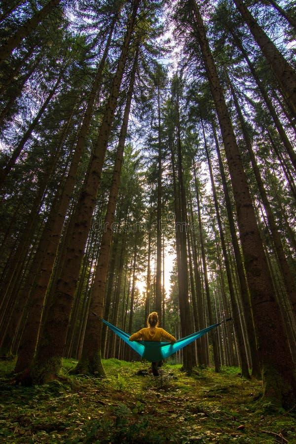 Menina que ama viajar relaxando na rede azul na floresta bávara de Alemanha fotos de stock