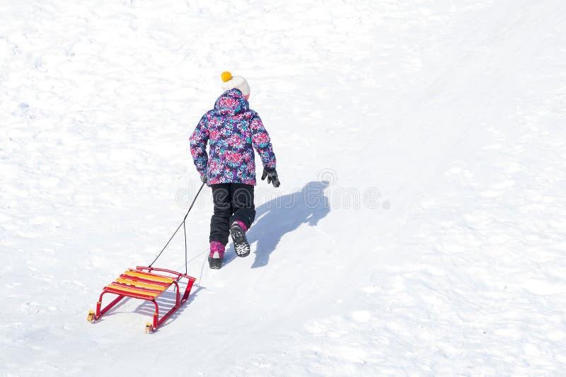 Menina que anda acima do monte na neve e que levanta seus trenós fotos de stock