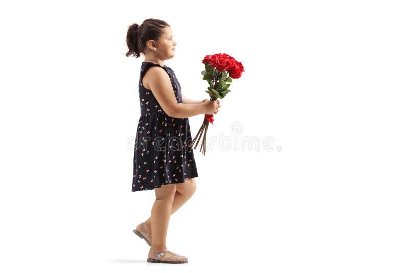 Menina que anda e que leva um grupo de rosas vermelhas foto de stock