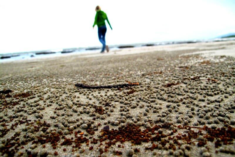Menina que anda em uma praia imagens de stock