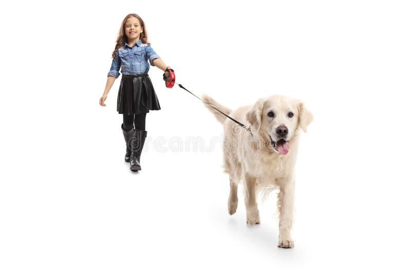 Menina que anda um cão fotos de stock