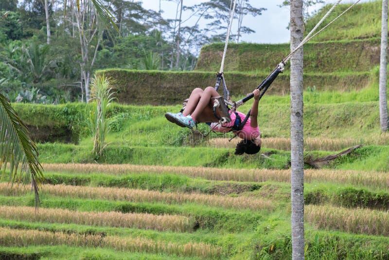 Menina que balança sobre os campos do arroz de Tegalalang em Ubud, Bali fotos de stock royalty free