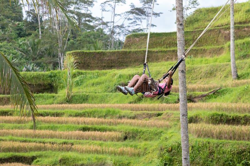 Menina que balança sobre os campos do arroz de Tegalalang em Ubud, Bali fotografia de stock royalty free