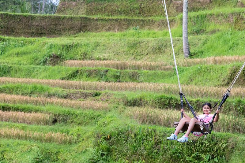 Menina que balança sobre os campos do arroz de Tegalalang em Ubud, Bali imagens de stock royalty free