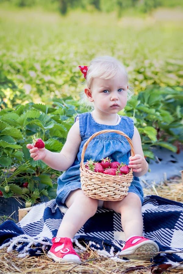 menina que come morangos no campo da morango fotografia de stock royalty free