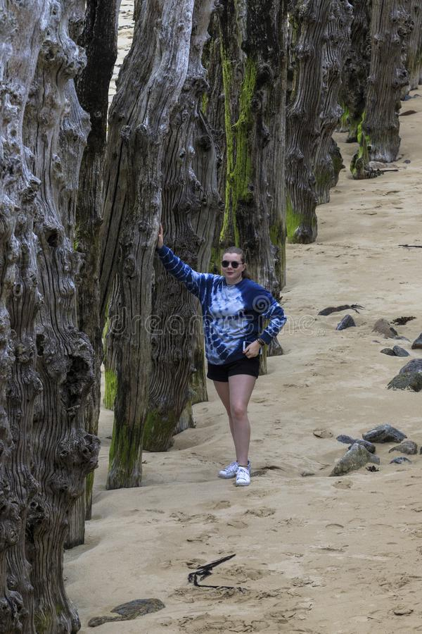 Menina que descansa no quebra-mar de madeira imagens de stock