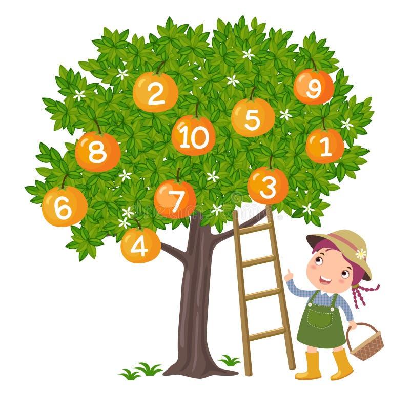 Menina que escolhe a laranja ilustração stock