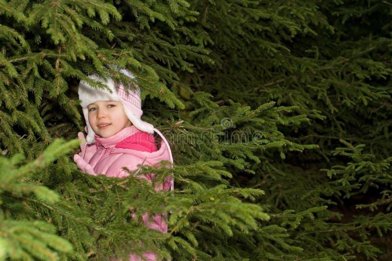 Menina que esconde em filiais de árvore imagem de stock