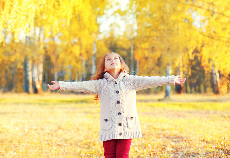 A menina que feliz a criança aprecia o dia ensolarado morno do outono olha acima caminhadas no parque fotografia de stock