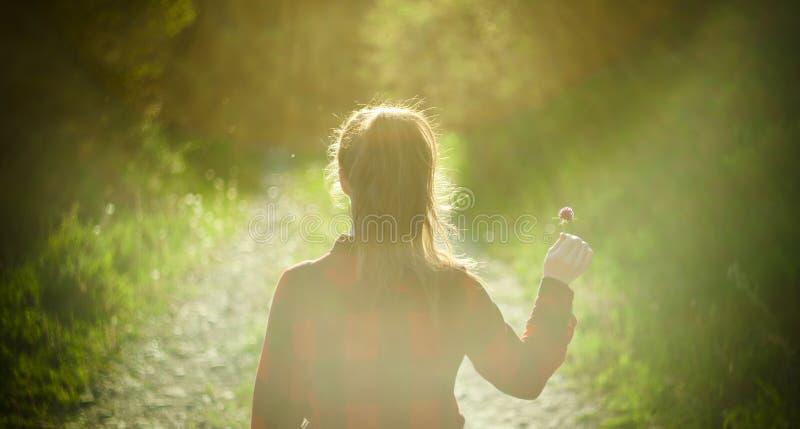 Menina que guarda a flor pequena, imagem artística abstrata fotografia de stock