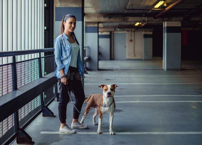 Menina que guarda o cão do amstaff em uma corrente em uma garagem imagens de stock royalty free