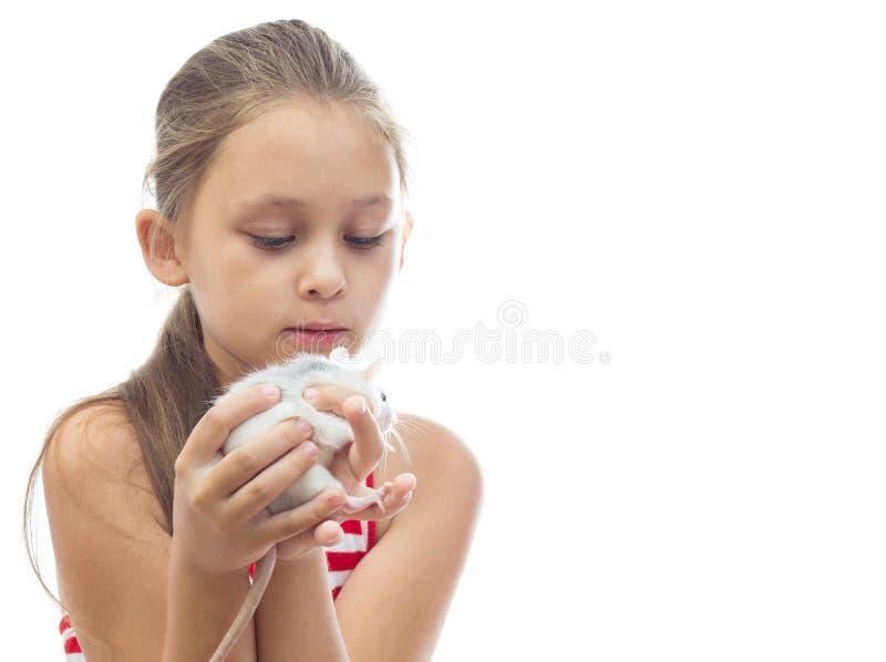 menina que guarda um rato do animal de estimação foto de stock