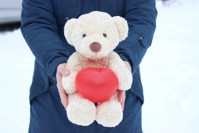 Menina que guarda um urso polar com um coração em suas patas O dia de Valentim, presente Declaração da proposta do amor e de uniã imagens de stock