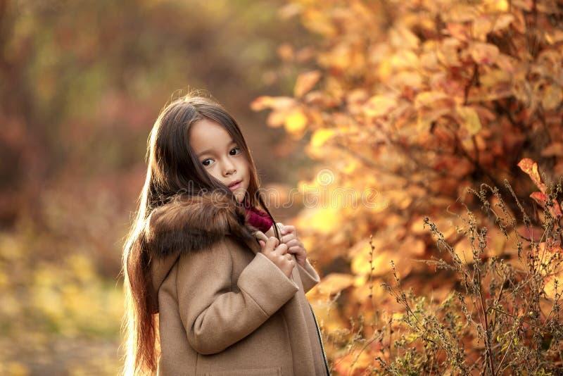 Menina que joga com as folhas caídas outono foto de stock royalty free