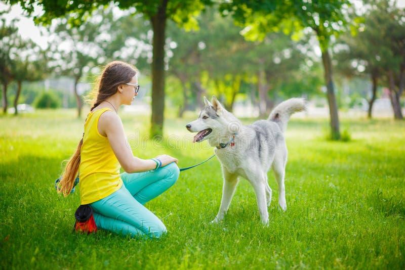Menina que joga com cão de puxar trenós imagem de stock royalty free