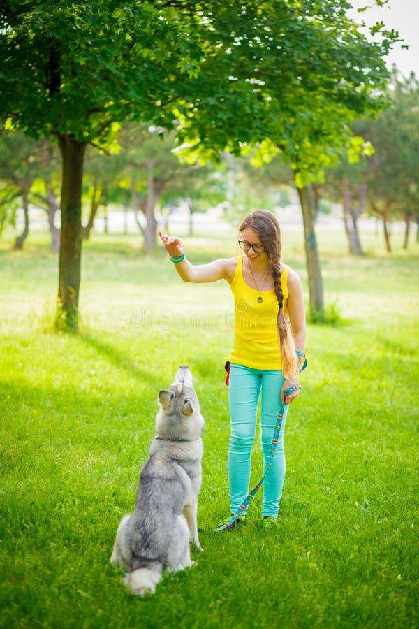 Menina que joga com cão de puxar trenós fotos de stock royalty free