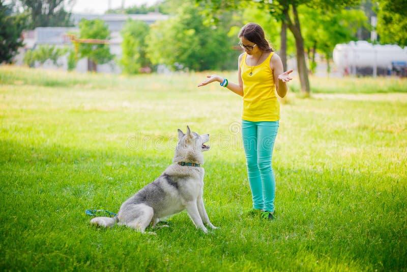 Menina que joga com cão de puxar trenós imagem de stock
