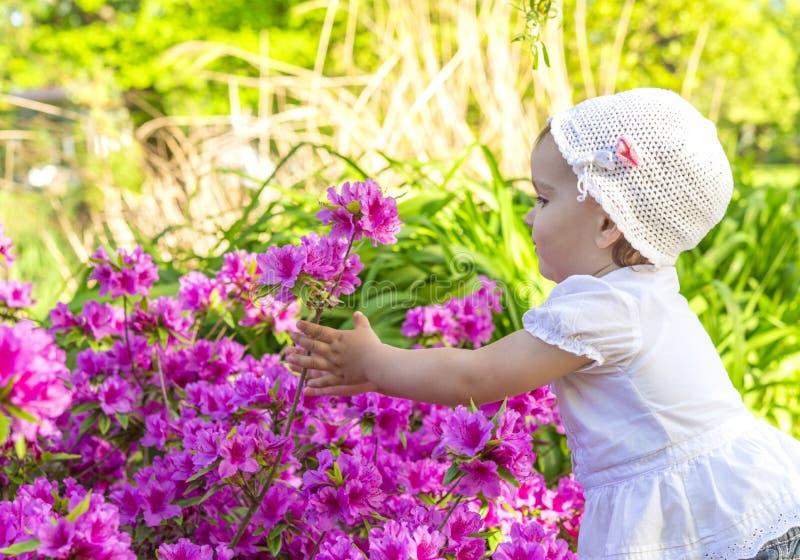 Menina que joga com flores imagem de stock royalty free