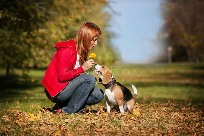 Menina que joga com seu cão no parque do outono fotografia de stock royalty free