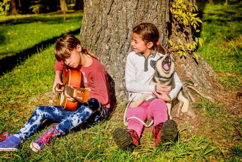 Menina que joga a guitarra no parque com o cachorrinho ronco que canta fotos de stock