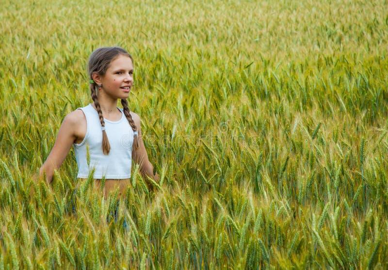Menina que joga no campo de trigo em um dia de verão morno fotos de stock royalty free