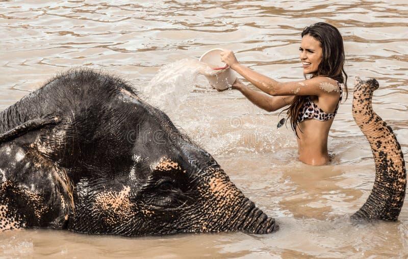 Menina que lava um elefante fotografia de stock royalty free