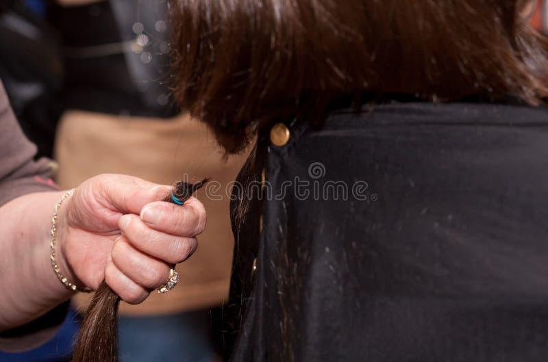 Menina que obtem um corte de cabelo imagem de stock royalty free