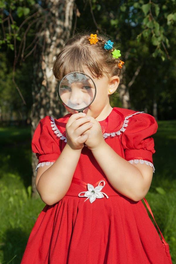 Menina que olha através do vidro magnifiying na grama imagens de stock
