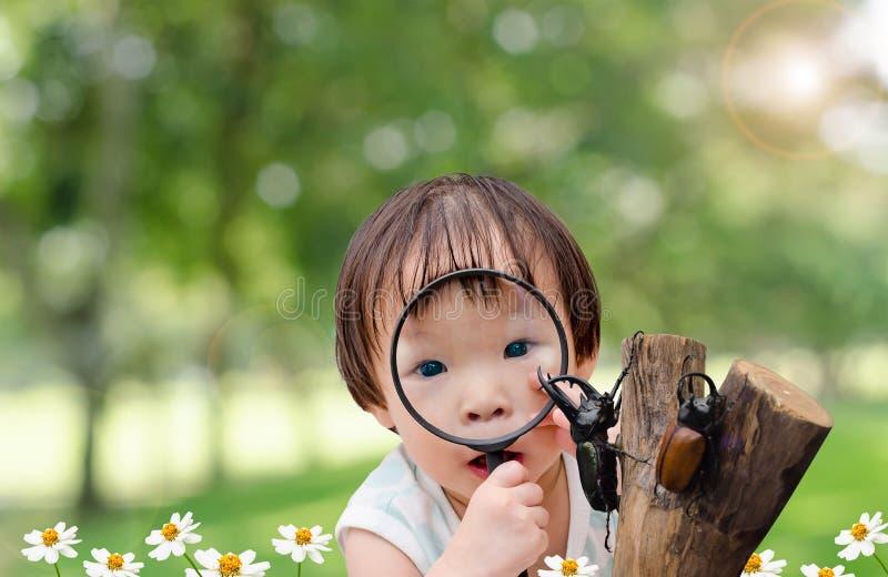 Menina que olha o besouro do rinoceronte no jardim imagens de stock royalty free