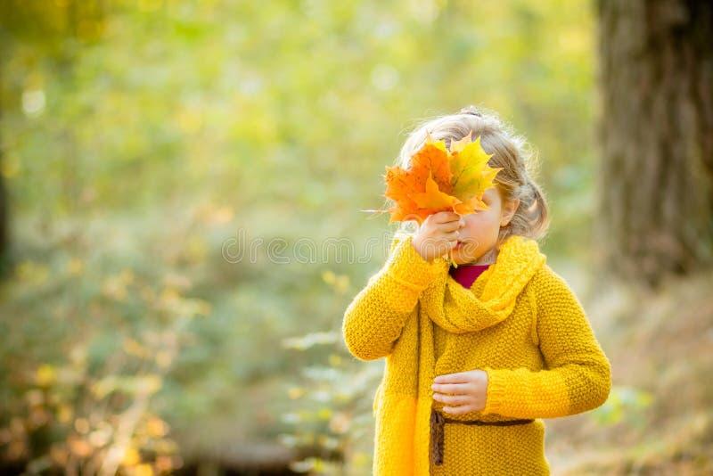Menina que olha para fora atrás de um ramalhete das folhas de outono Autumn Portrait Conceito do outono Tempo da infância cute fotografia de stock royalty free