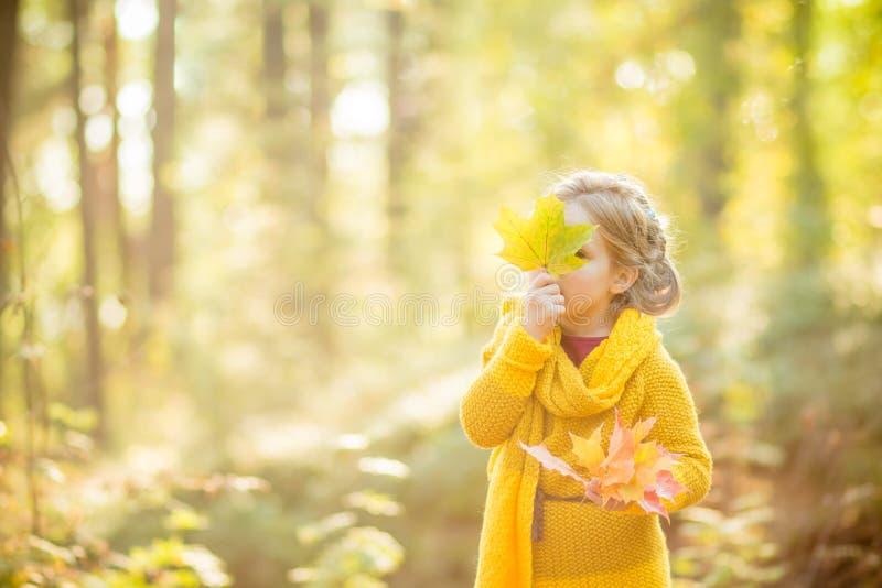 Menina que olha para fora atrás de um ramalhete das folhas de outono Autumn Portrait Conceito do outono Tempo da infância cute imagem de stock