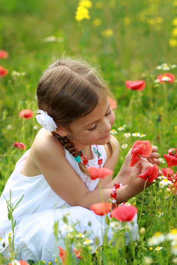 Menina que olha uma papoila vermelha fotografia de stock
