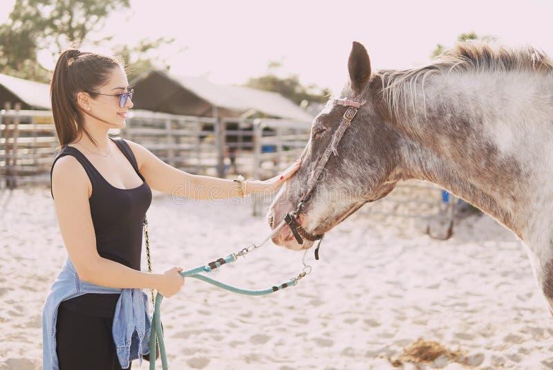 Menina que prepara-se para montar um cavalo foto de stock