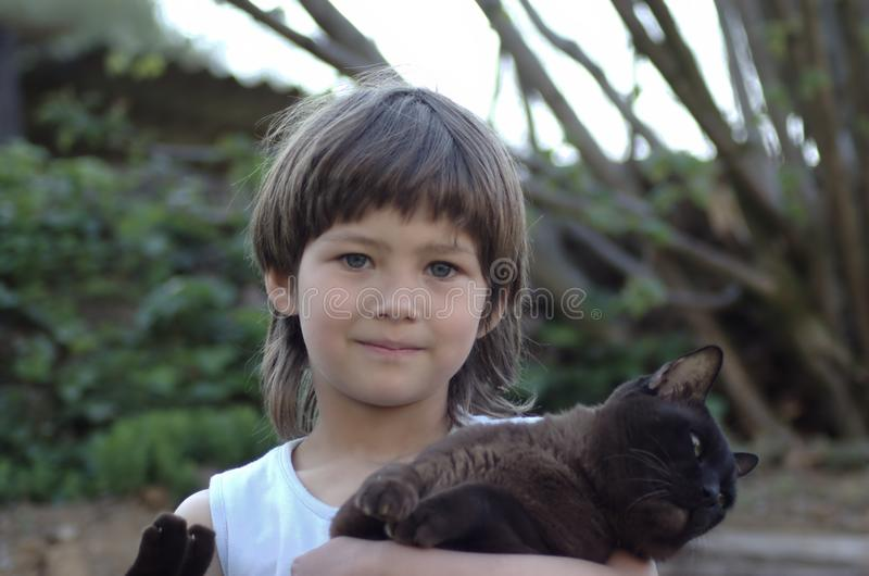 A menina que realiza em seus braços bronzeia o gato burmese fotos de stock