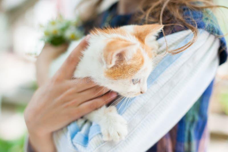 Menina que realiza um gatinho delicadamente em seus braços imagens de stock royalty free