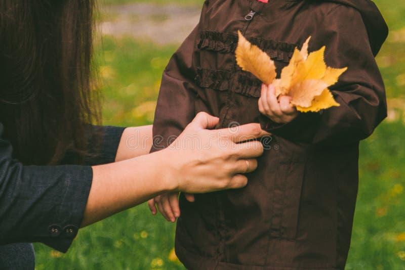 A menina que recolhe o amarelo sae na grama verde com a jovem mulher adulta imagens de stock royalty free