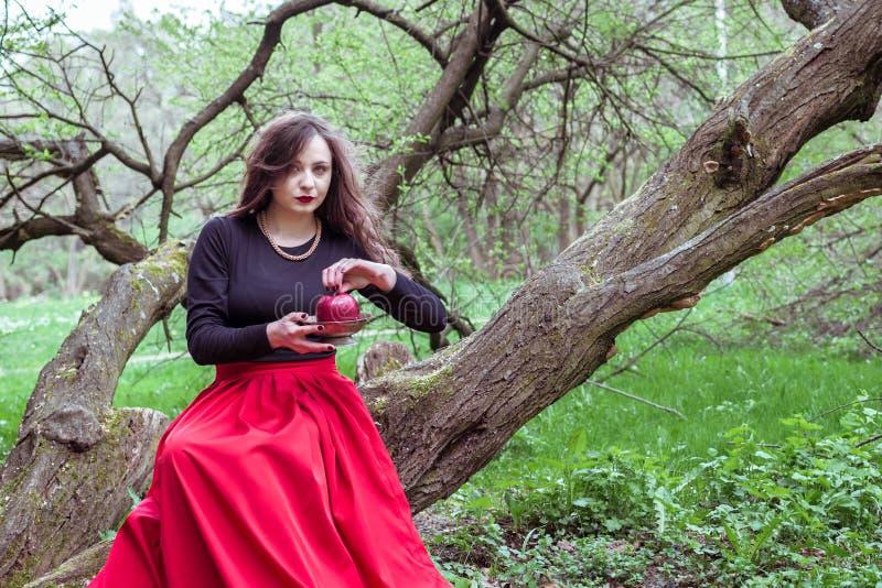 Menina que senta-se em um tronco de árvore imagens de stock royalty free