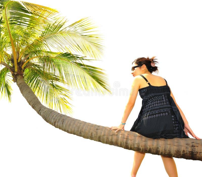 Menina que senta-se em uma árvore de coco imagens de stock