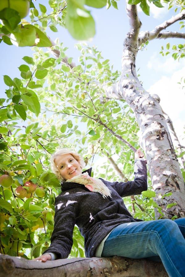 Menina que senta-se em uma árvore de maçã fotos de stock royalty free
