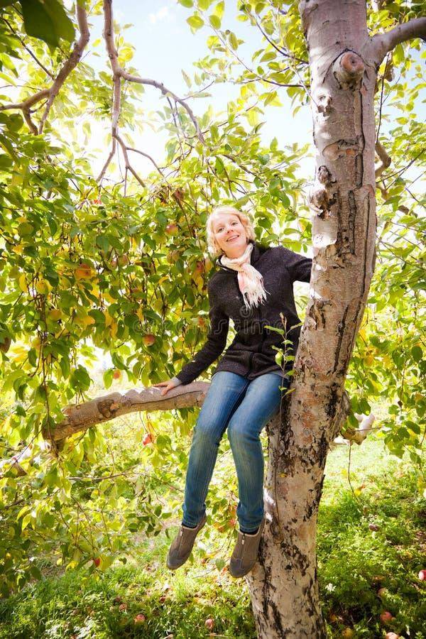 Menina que senta-se em uma árvore de maçã fotos de stock