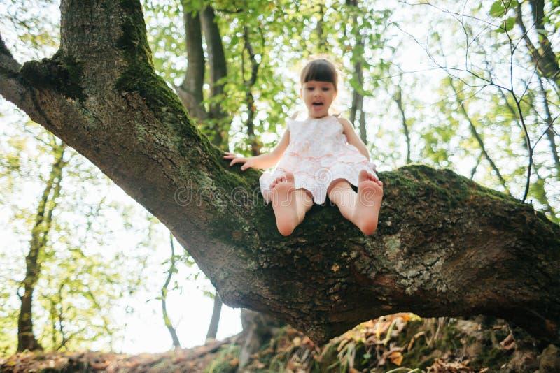Menina que senta-se em uma árvore pé Jogado com seus pés fotos de stock