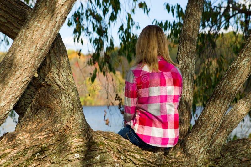 Menina que senta-se na árvore sobre o close up do lago foto de stock