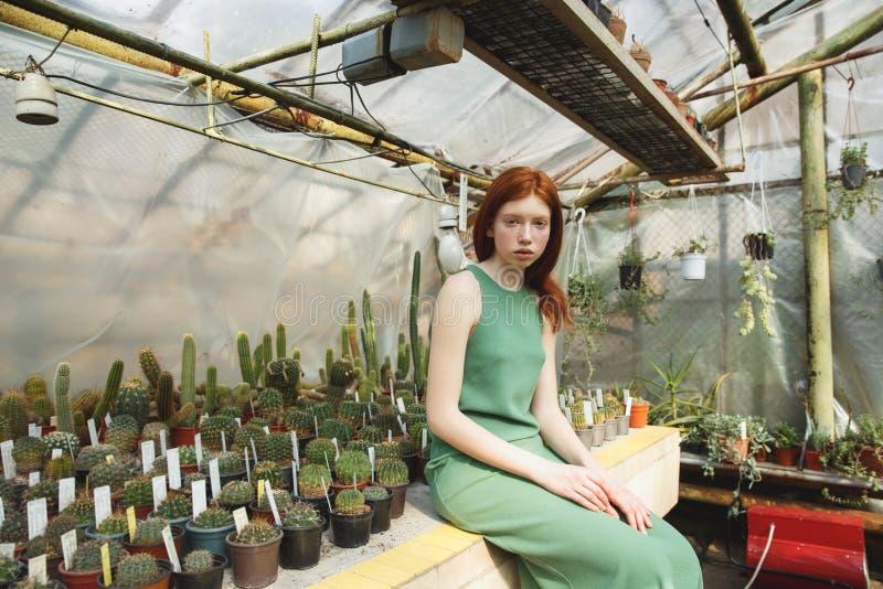 Menina que senta-se na prateleira com cactos fotografia de stock