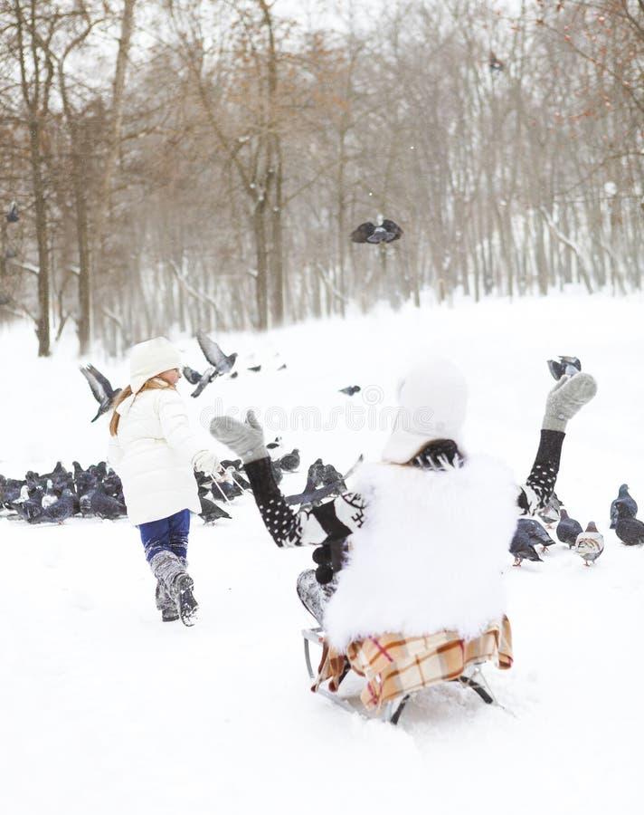 Menina que tem o divertimento em um trenó na neve com sua mãe imagem de stock royalty free