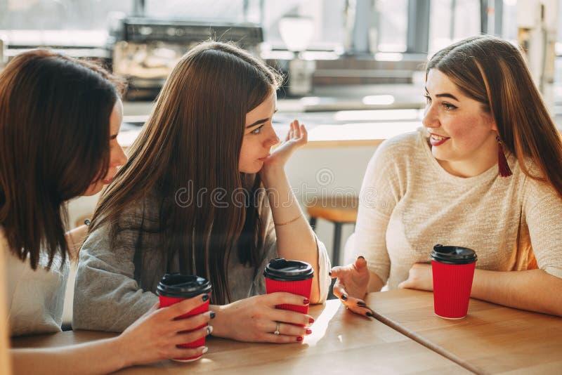 Menina que tenta consolar a seu melhor amigo triste imagem de stock