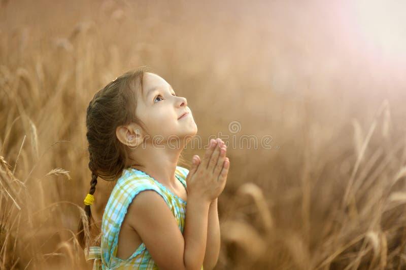 A menina reza no campo de trigo fotografia de stock royalty free