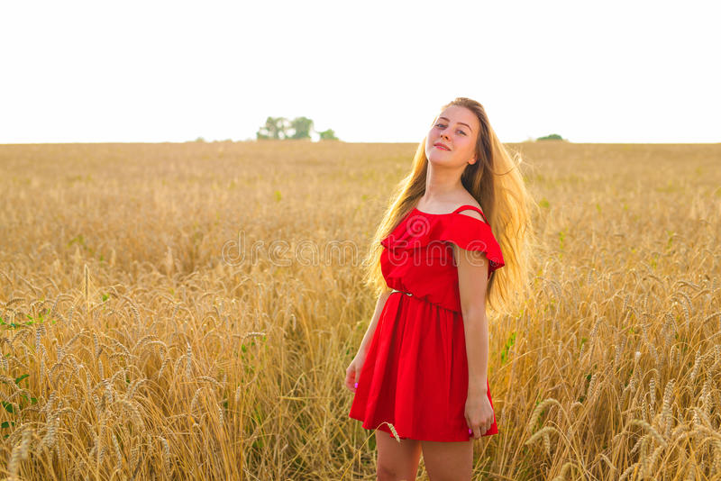 Menina romântica lindo fora Modelo bonito no vestido vermelho curto no campo Cabelo longo que funde no vento Backlit fotos de stock royalty free