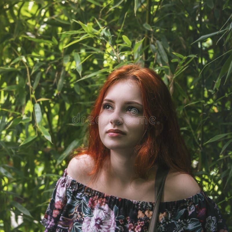 Menina ruivo bonita nova entre o lo de bambu verde da floresta imagens de stock royalty free