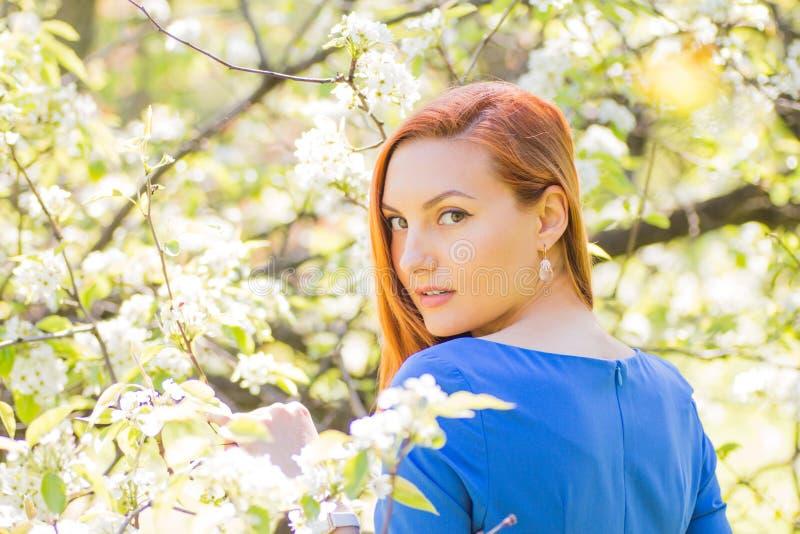 Menina ruivo nova bonita no vestido azul entre o flowe da mola imagem de stock royalty free